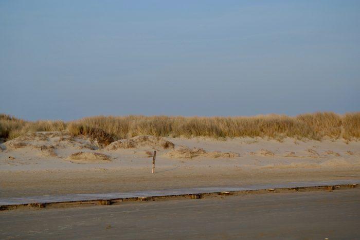Nordsee | schokogiraffe.de